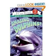 dolphins cover