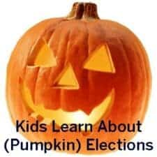 election activity