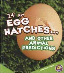 If an Egg Hatches