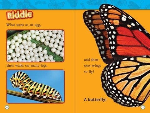 Kids Book For Nonfiction