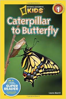 Non fiction Early Reader Series for ages 5 and 6