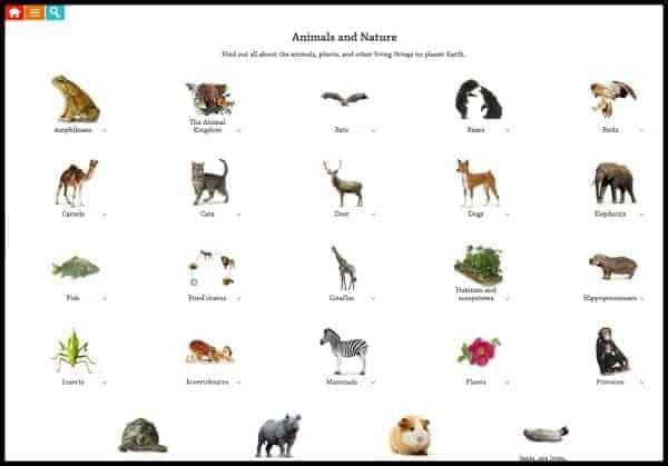 online encyclopedia for kids, DKfindout!