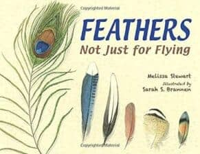 Fascinating Nonfiction Books for Kids