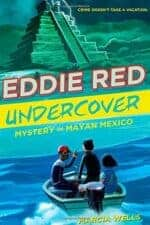 Mystery Chapter Books for Kids