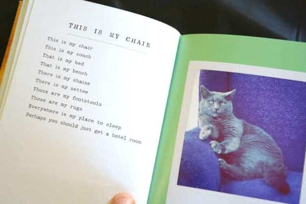 read poetry reading ideas for kids