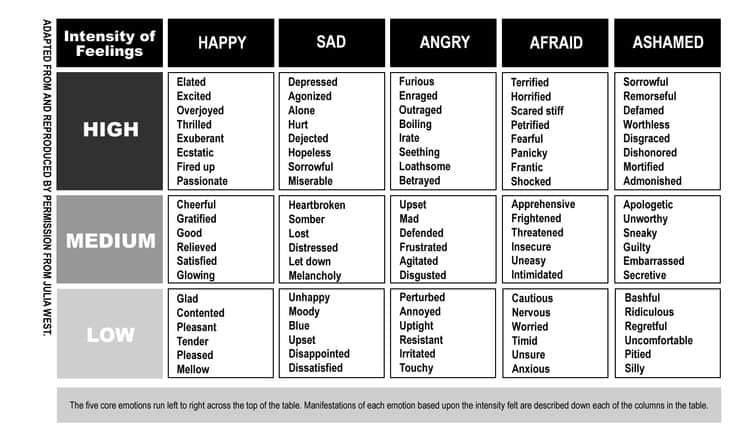Emotions Basic 5 from Emotional Intelligence 2.0