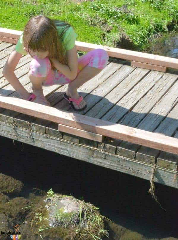 Emotional Intelligence Activity - Pooh Sticks