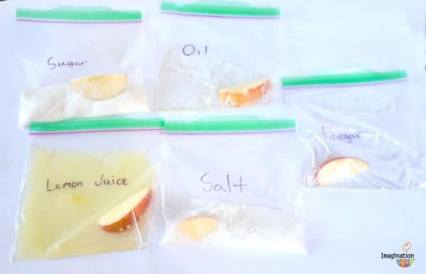 science experiment with apples