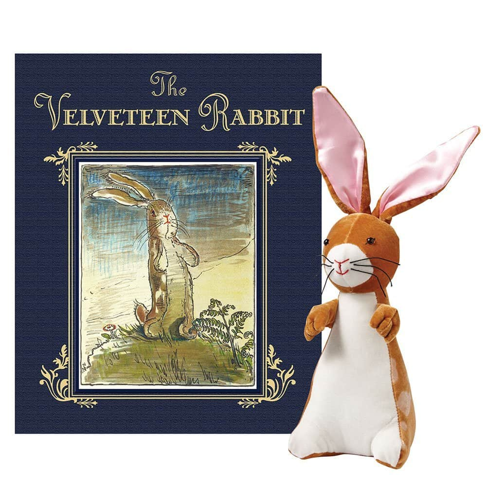 The Velveteen Rabbit Book And Plush Test