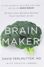 Brain Maker review Impactful Books I'm Reading