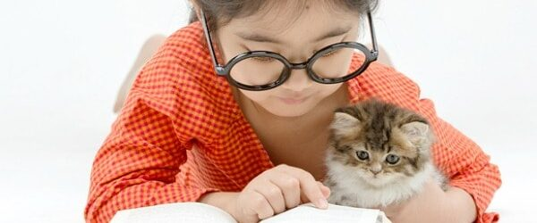 Pawsitively Catilicious Cat Books for Kids