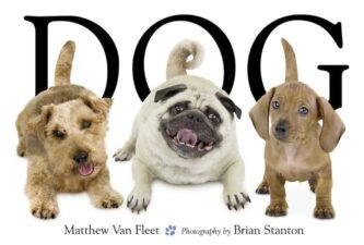 DOG Dog Books That Kids Love