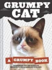 Grumpy Cat children's books about cats