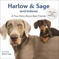 Harlow & Sage Dog Picture Books That Kids Love