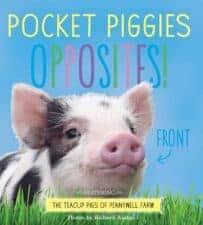 Pocket Piggies Opposites New Releases: Board Books Spring 2016