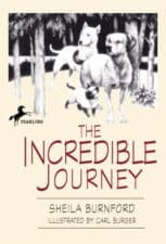 The Incredible Journey- A Tale of Three Animals by Sheila Burnford
