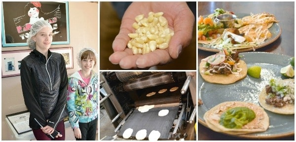 farm to table activities with kids