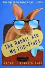 The Rabbit Ate My Flip-Flops Summer Vacation Books About Summer Vacation
