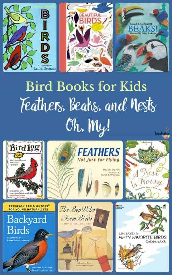 bird books for kids children's books bird activities
