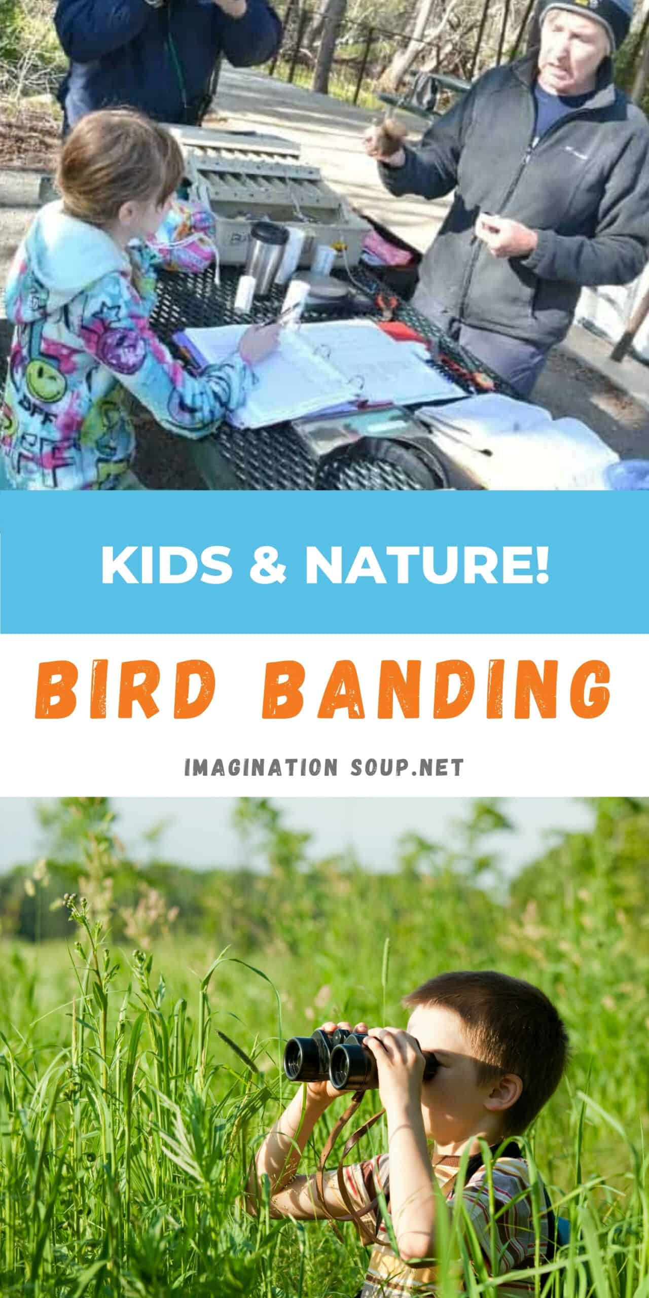 bird banding with kids