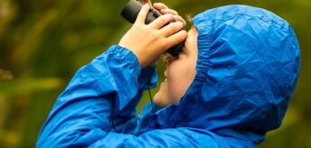 bird watching, banding, and more activities for children