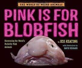 Amazing Non Fiction Children's Books