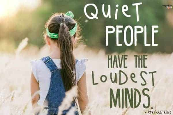 Quiet Power and Introverts quote from Stephen King