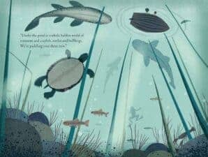 Over and Under the Pond by Kate Messner children's books about animals and nature