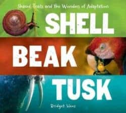 Shell Beak Tusk- Shared Traits and the Wonders of Adaptation by Bridget Heos New Spring Books for Kids About Nature and Animals
