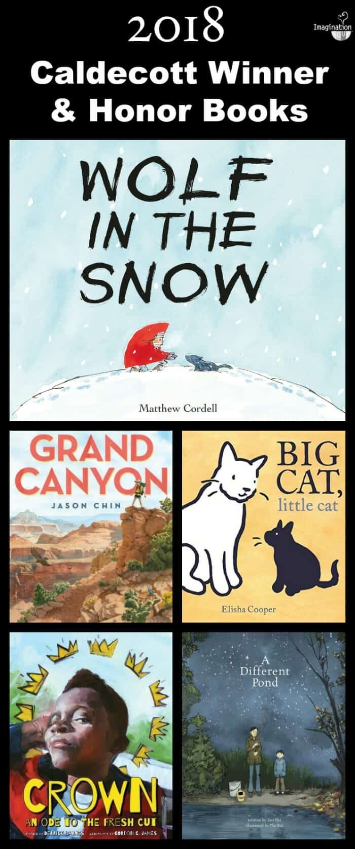 2018 Caldecott winner and honor books