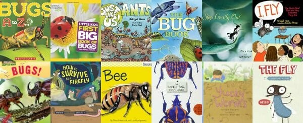 Best Children's Books About Bugs (Insects)