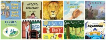 wordless picture books list for kids and skill building activities