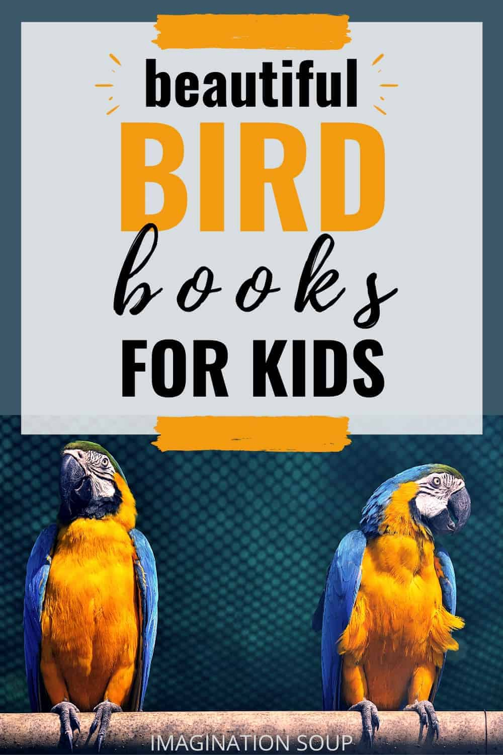 best picture books about birds
