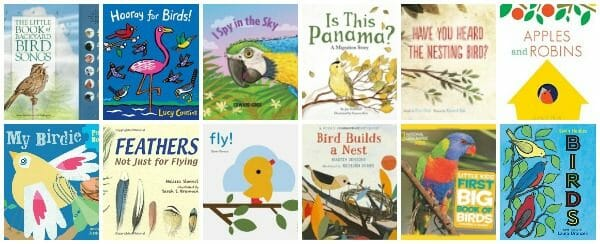 Beautiful Bird Books for Kids (To Spark an Interest in Nature)
