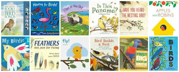 the best children's books about birds