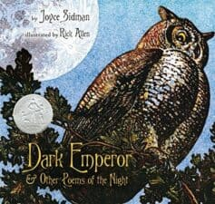 What's in the Dark? Books About Nocturnal Animals