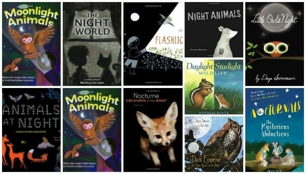 picture books about nocturnal animals