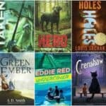 Wholesome Middle Grade Chapter Books for Boys