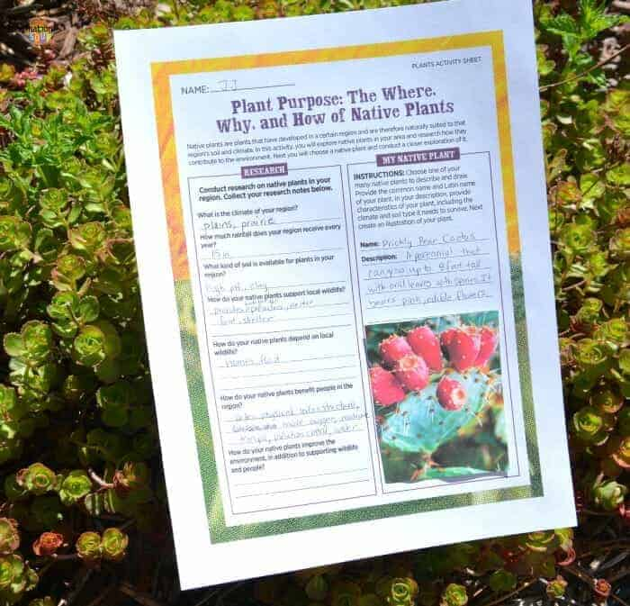 BLOOM! Lesson Plans & Activities Teaches Middle School Students About Plants