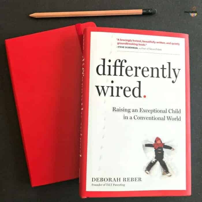 Differently Wired book review Deborah Reber