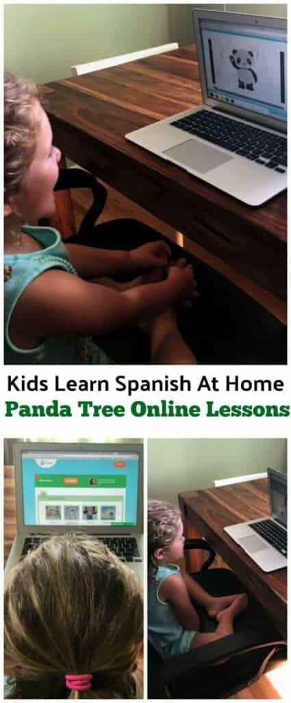 Learn Spanish At Home With Panda Tree Language Learning For Kids