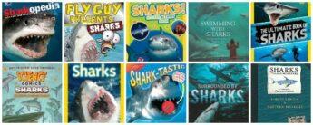 best shark books for kids (for shark week)