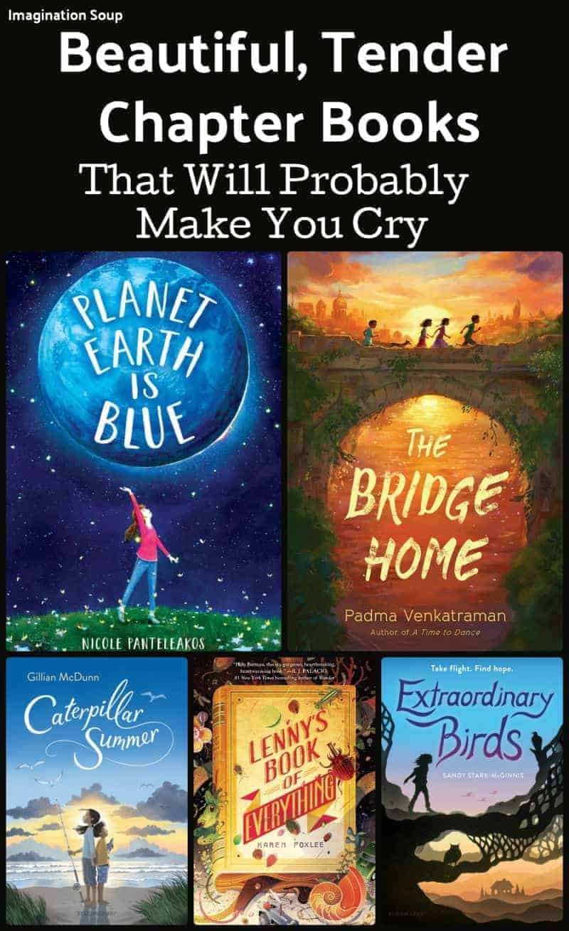 beautiful, tender chapter books that will probably make you cry