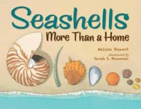 Children's Books About seashells