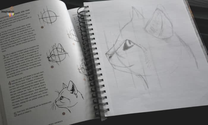 drawing animals books for kids