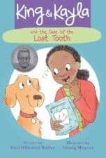 illustrated chapter book series for beginning readers