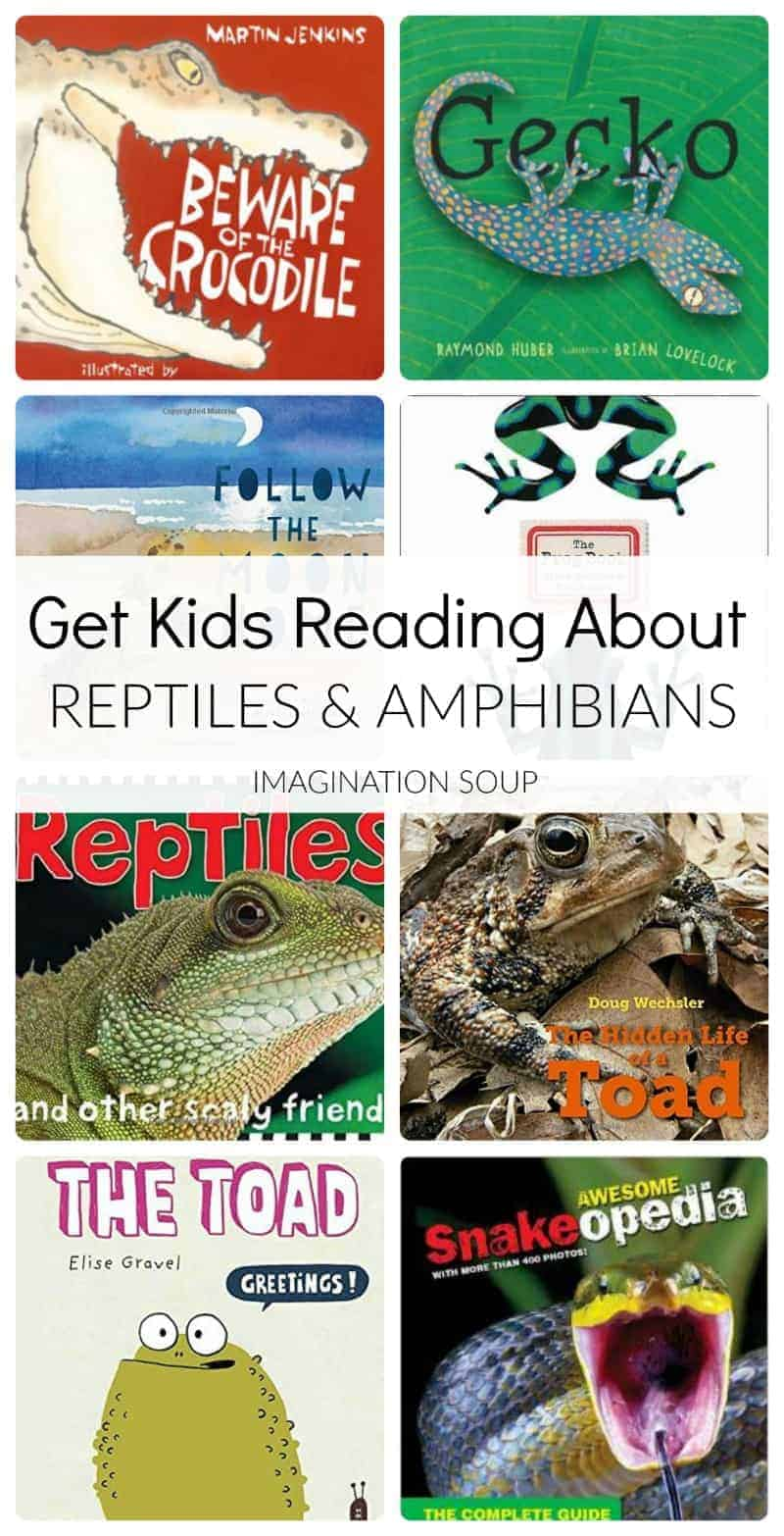 Picture Books About Reptiles and Amphibians
