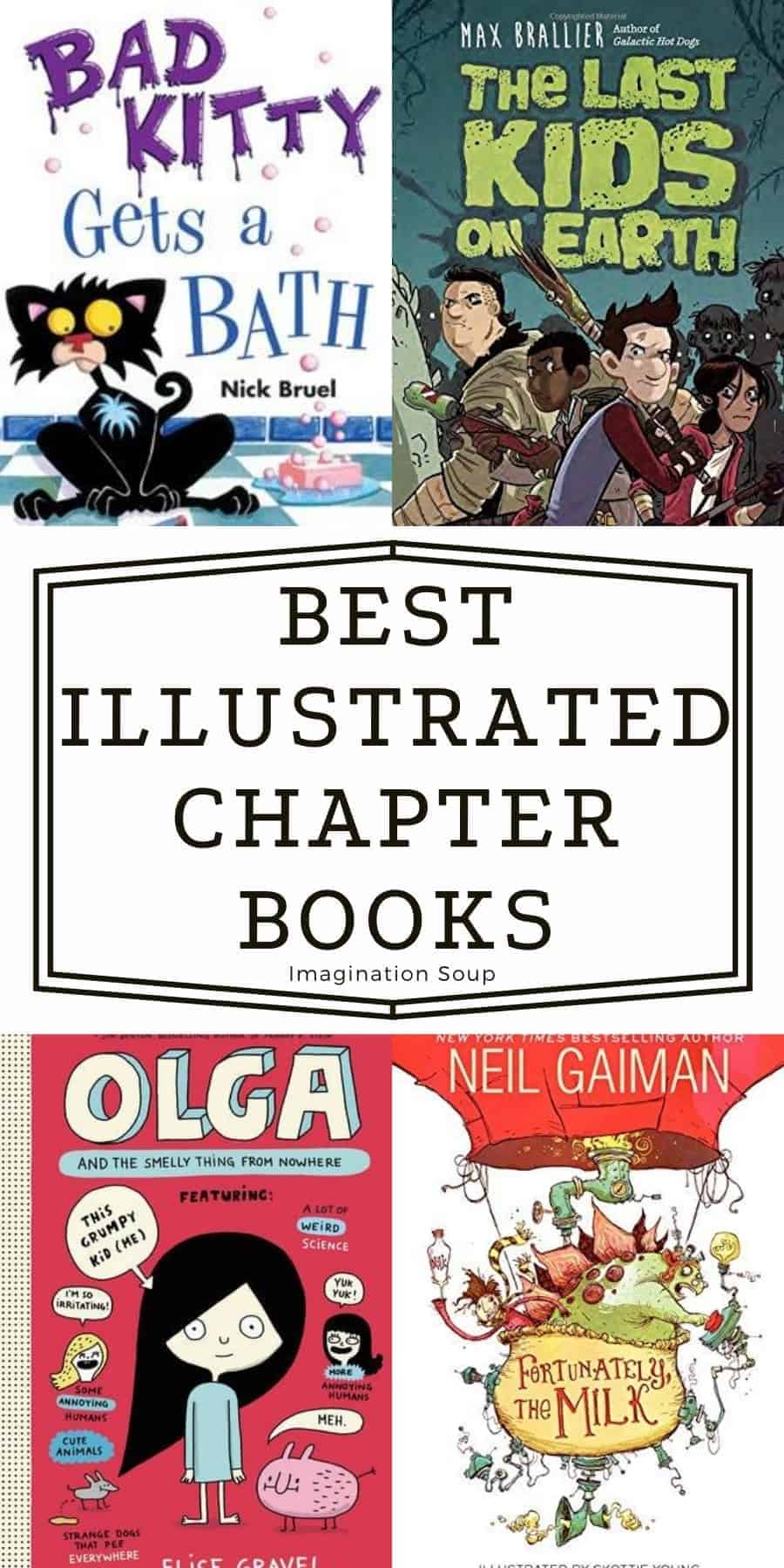 best illustrated chapter books