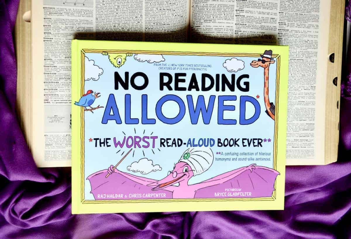 Favorite Wordplay Picture Book: No Reading Allowed Book