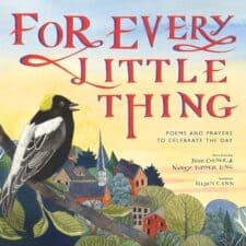 for every little thing 10 books on gratitude for children